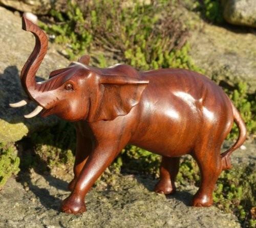 Elefant22 trompetender Elefant