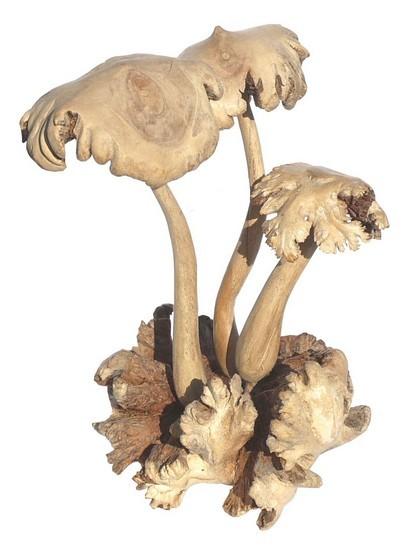 Parasit19 Pilze groß 3er