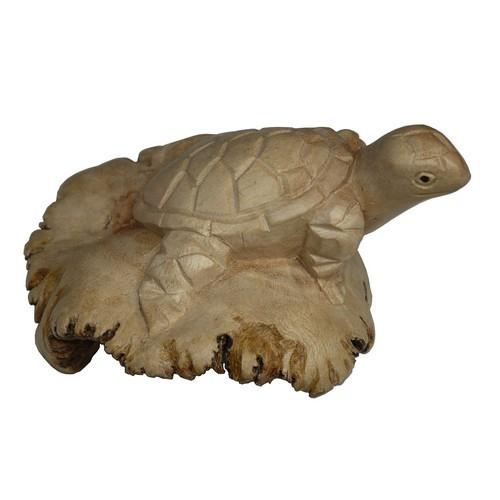 Parasit02 Schildkröte