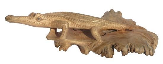 Parasit15 Krokodil groß