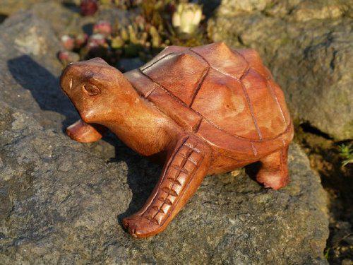 Turtle03.20 20cm Holz Schildkröte