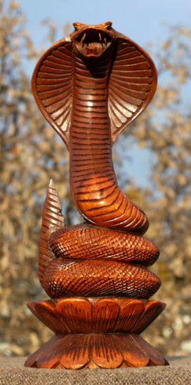 Cobra07 Kobra auf Lotus