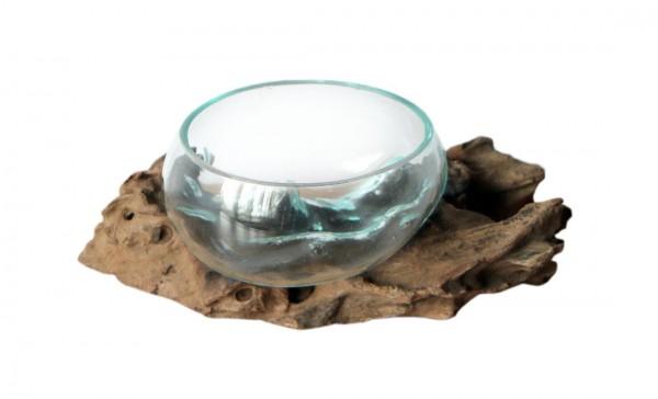 Glas-Schale Ø Glas 12-13 cm auf Wurzelholz B-WARE